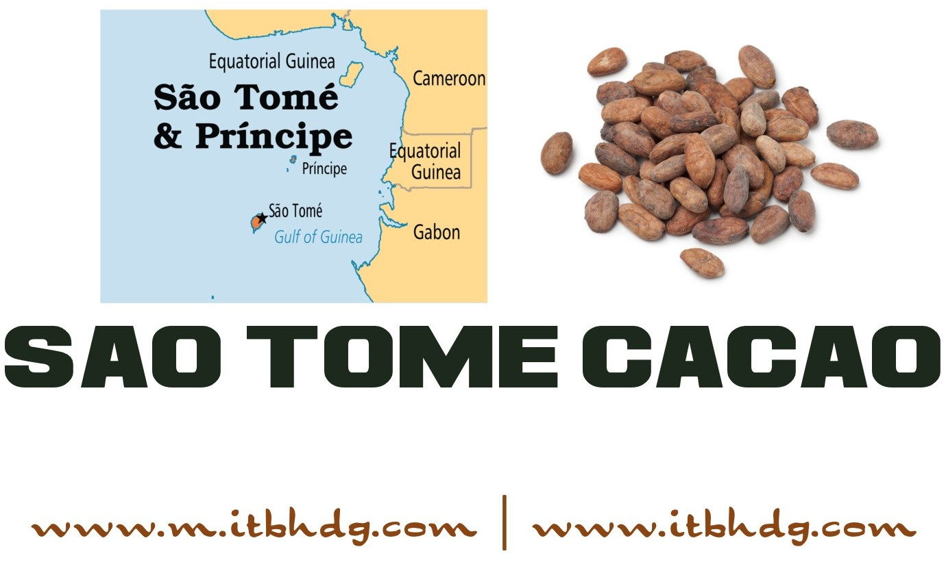 Sao Tome Organic Cacao Beans | Free Shipping