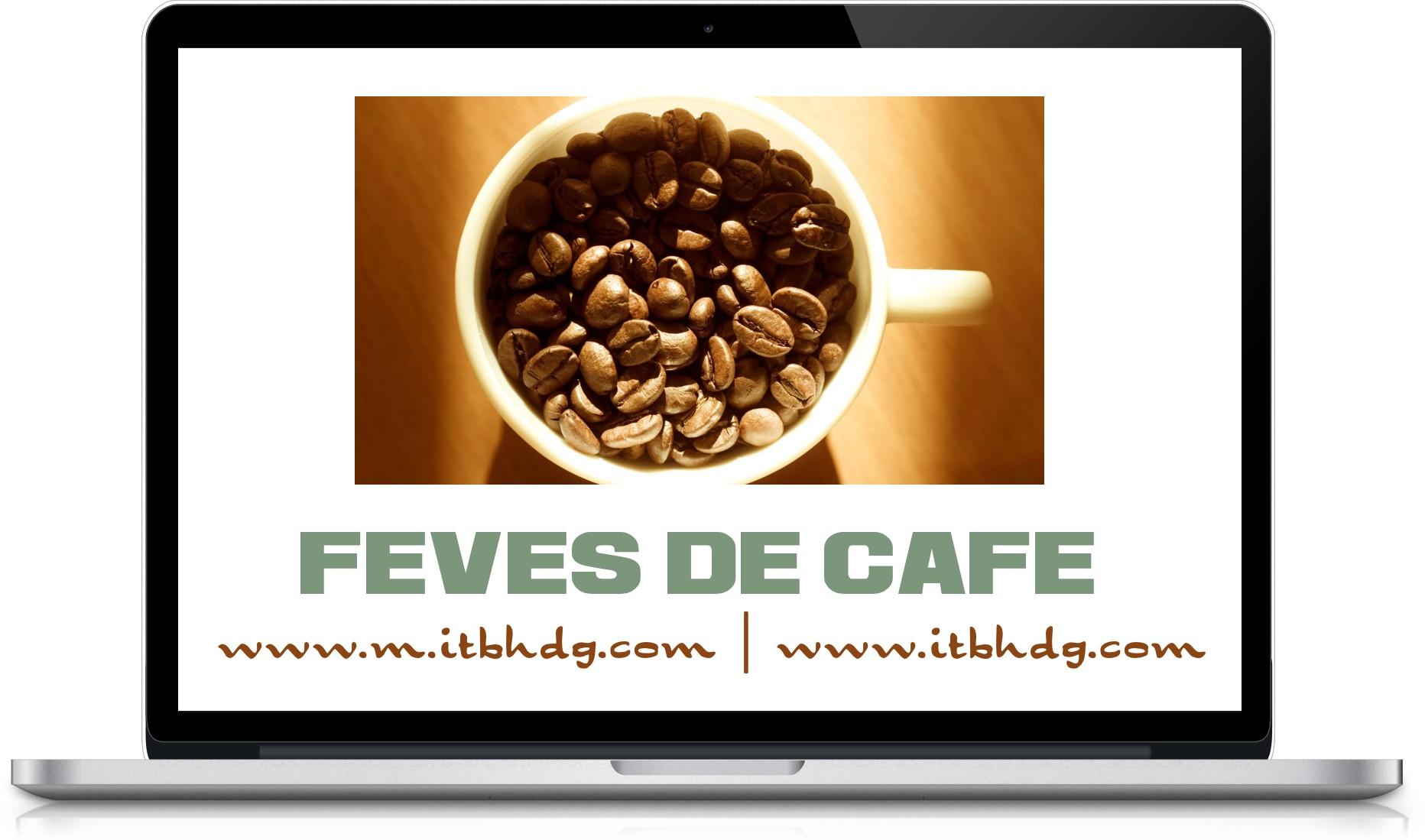Fèves de Café, Cafés gourmets, Café Bio, micro-lots de Café | www.m.itbhdg.com | www.itbhdg.com